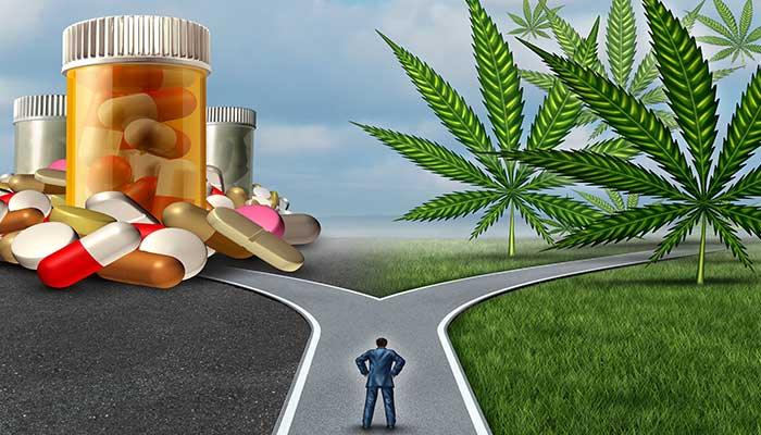 Pharmaceutical Medication Pills or Cannabidiol CBD